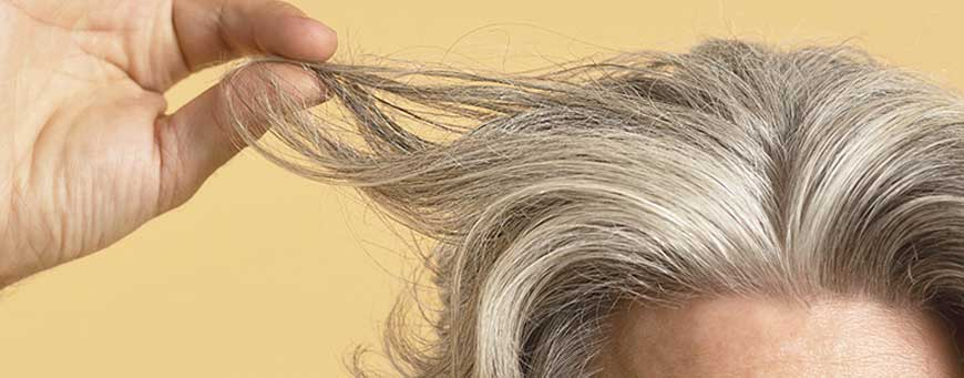 How many hairs fall out a day?