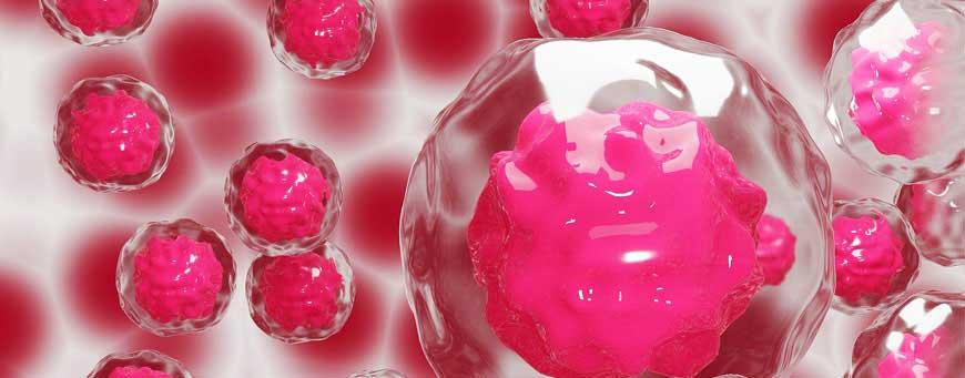 investigación de células madre en pelo artificial